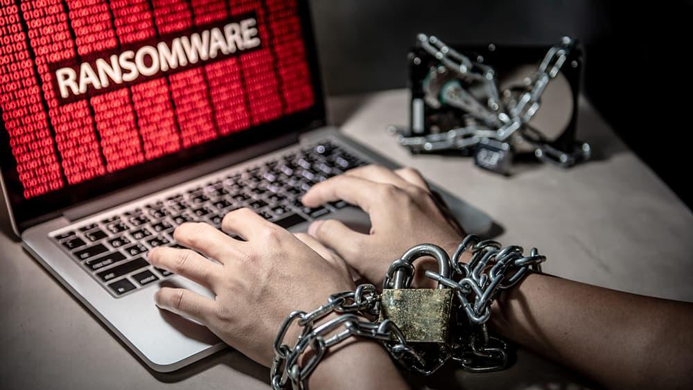 Il virus che gli imprenditori di Jesolo devono conoscere per evitare di pagare 6mila euro